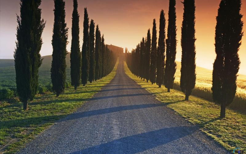 Tastes of Tuscany Self Drive