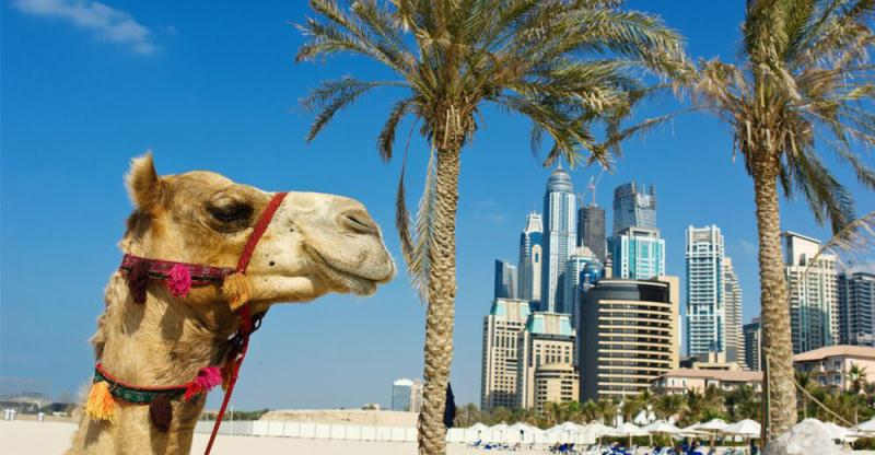 Why the UAE deserves to be on the bucket list