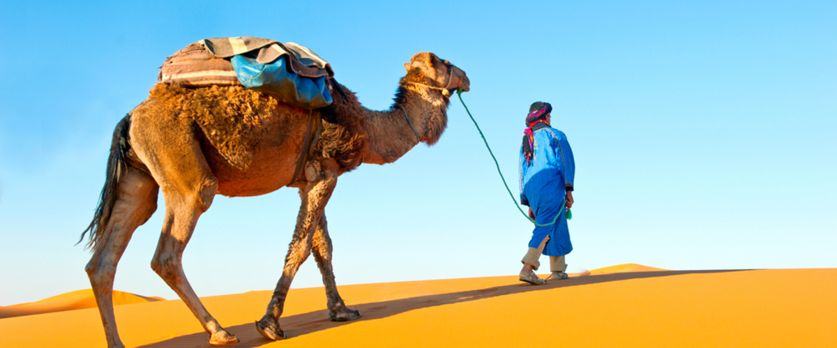 Arab with camel