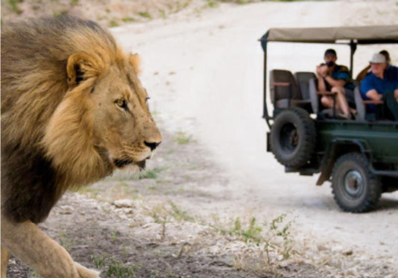 EXCLUSIVE 16 day Grand Tour of South Africa