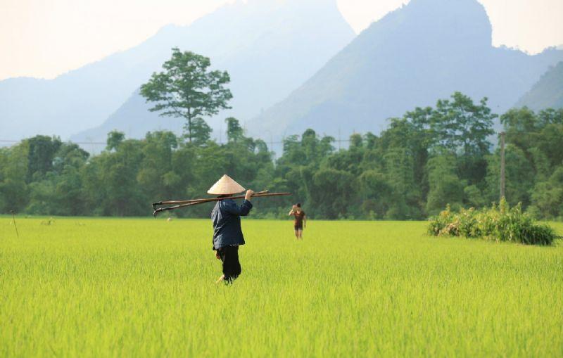 Vietnam - A wealth of culture